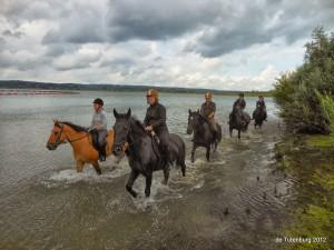 Ponykampen 2012 - Pluskamp