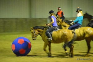 Wedstrijden 2014 - zo - paardenvoetbal