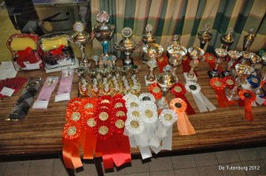 Wedstrijden 2012 - za - prijsuitreiking