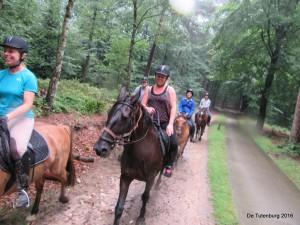 Ponykampen 2016 - Pluskamp