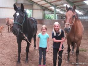 Ponykampen 2016 - Minikamp