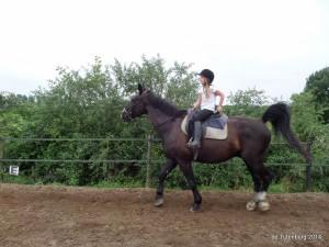 SAM 5985