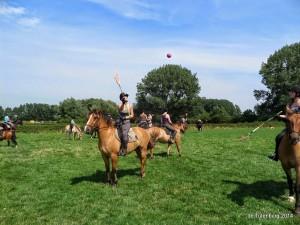 Ponykampen 2014 - Pluskamp