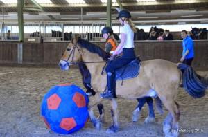 Wedstrijden 2015 - zo - paardenvoetbal