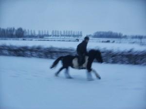 winter252020102520091